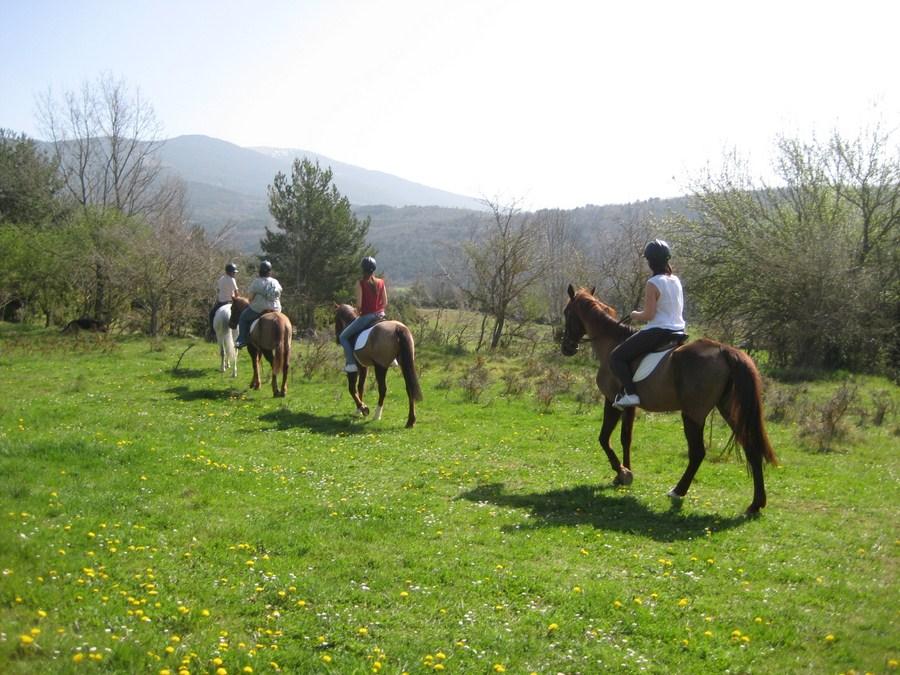 Paseos a caballo en Satué