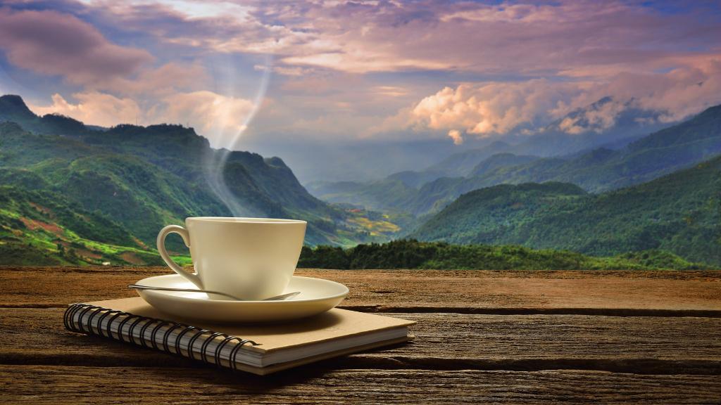 Café en la naturaleza del Pirineo Aragonés
